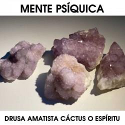 Drusa Amatista Cáctus o...